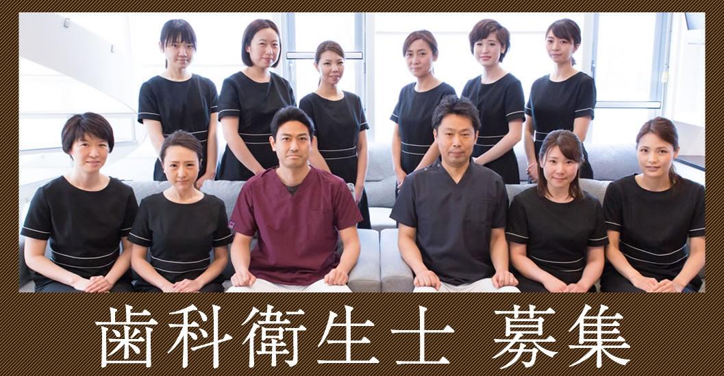 歯科衛生士・助手・事務の求人